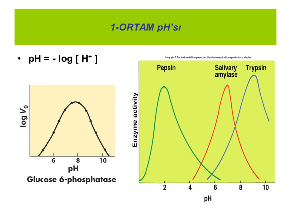 1-ORTAM pH'sı pH = - log [ H+ ]